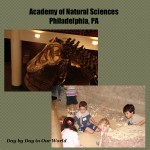 Academy of Natural Sciences in Philadelphia