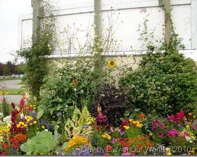 Wordless Wednesday ~ Palmer Educational Garden