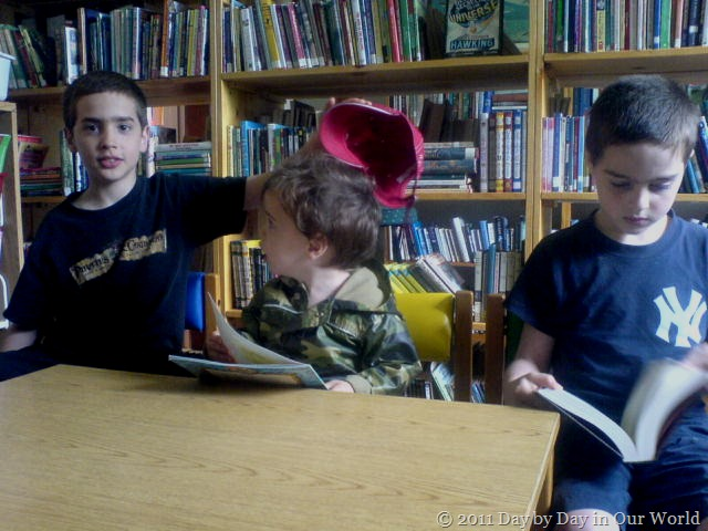 Visiting the Library for Fun