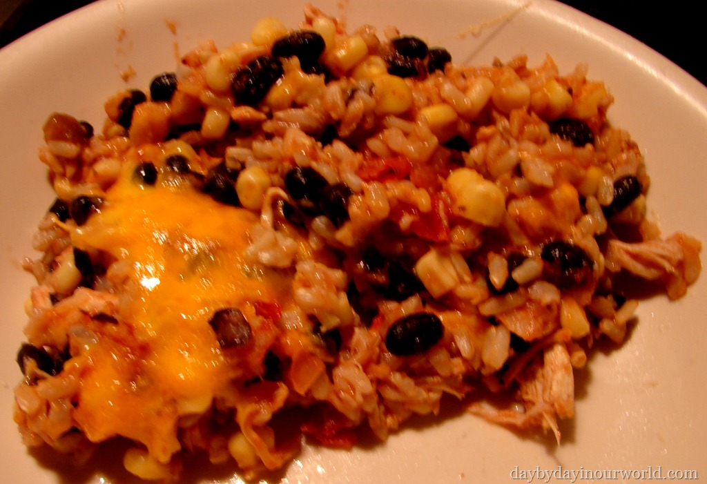 Mexican Chicken and Rice Casserole - Day By Day in Our World