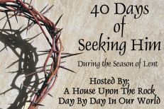 40 Days of Seeking Him in Lent 2013 ~ Week Five