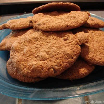 Chocolate Chip and Almond Flax Cookies
