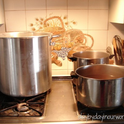 What's in the Pot? (Not so Wordless Wednesday)