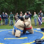 Wordless Wednesday ~ Picnic Fun with Sumo Wrestlers?