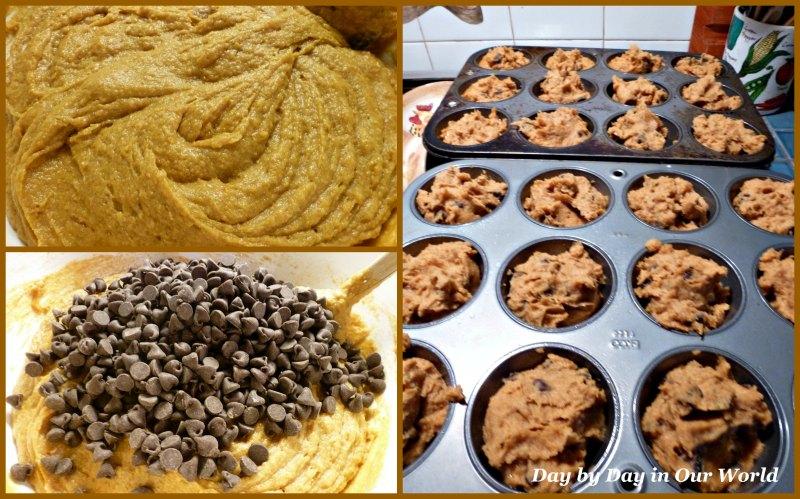 Making Pumpkin Chocolate Chip Muffins