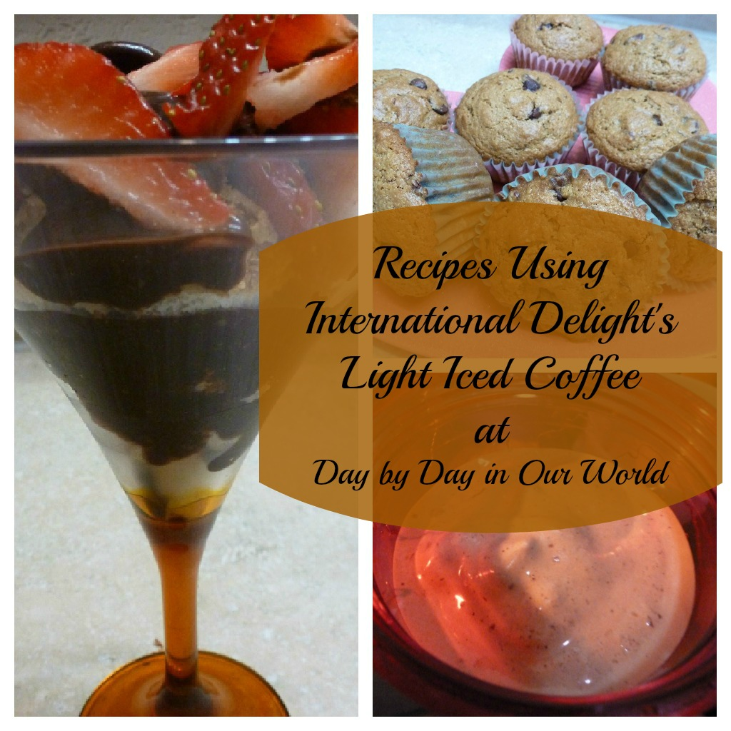 Recipes using International Delight #LightIcedCoffee