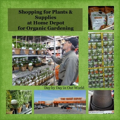 Initial Steps to Organic Gardening #DigIn #Ad