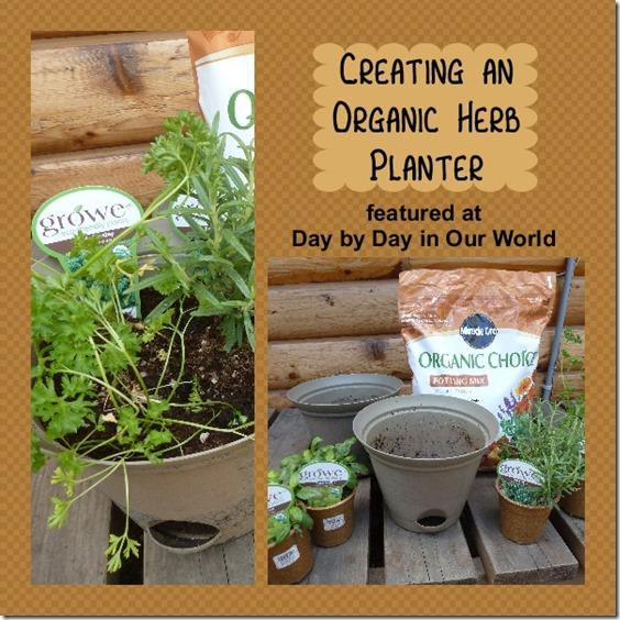 Creating an Organic Herb Planter #DigIn #Ad