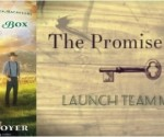 Promise Box Launch Team Button