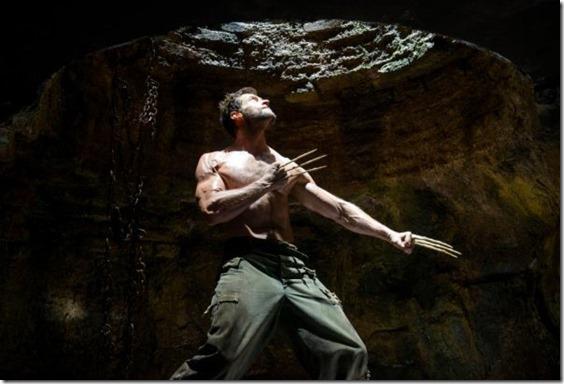The Wolverine (600x407)