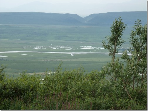 Valley to the north of Denali Highway Alaska