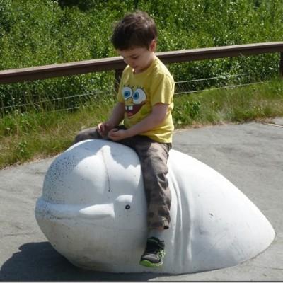 Spending Time at Bird Point Park