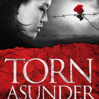 Announcing Torn Asunder, a new novel from Alana Terry