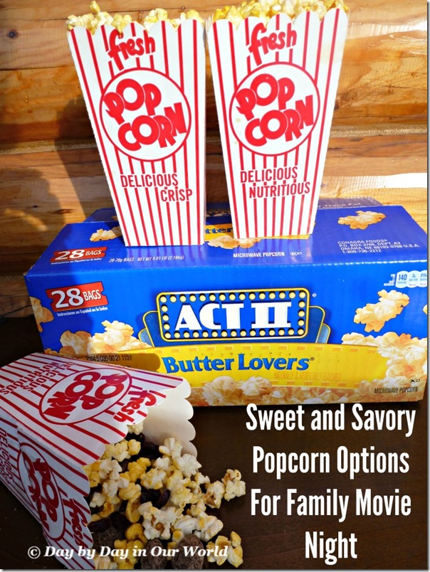 Sweet and Savory Popcorn Options For Family Movie Night Featured at Day by Day in Our World
