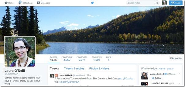 New Twitter Profile After Tweaks