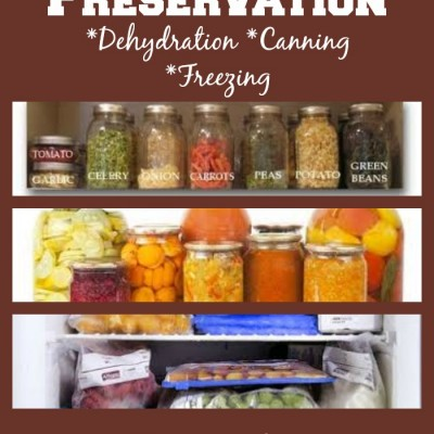 Basics of Food Preservation