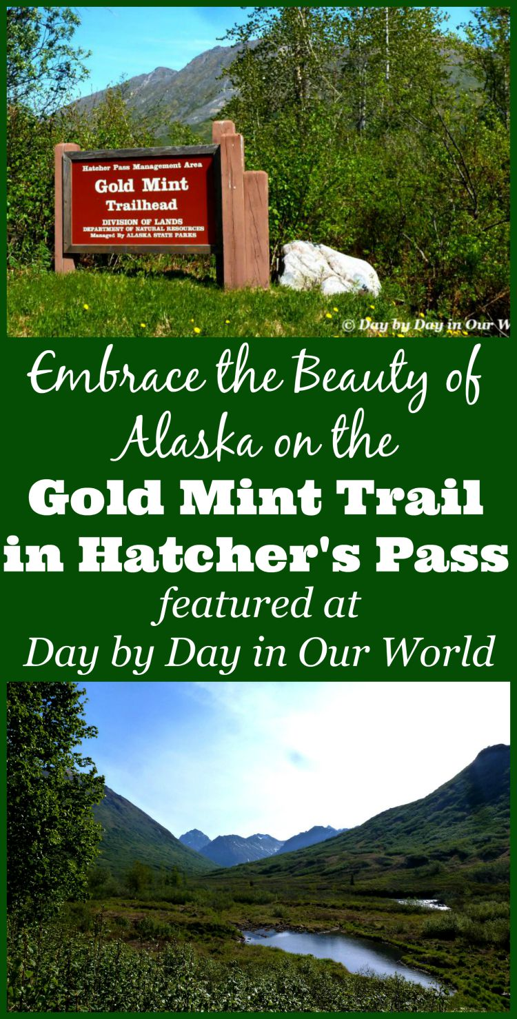 Along the Gold Mint Trail in Hatchers Pass Alaska You Can Embrace Natural Beauty | Day by Day in Our World
