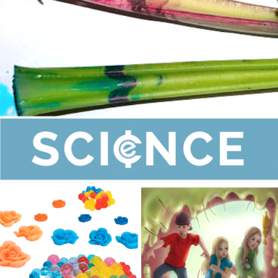 Back to School Science Projects and Resources