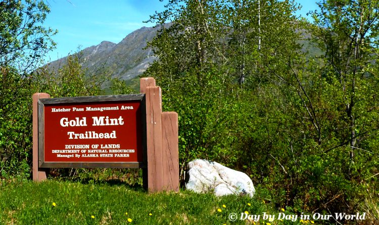 Gold Mint Trail is One Park of Hatcher Pass in the Mat Su Valley of Alaska