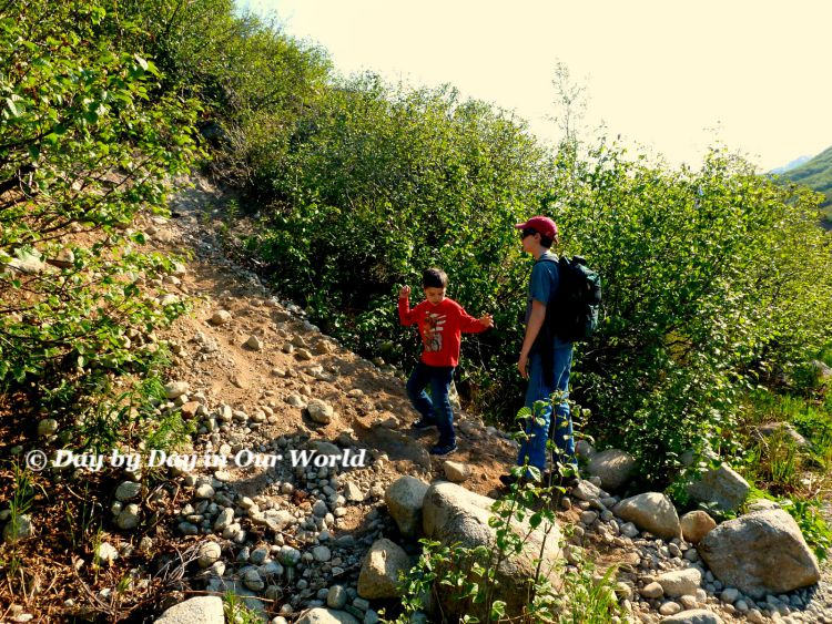 Rock Slide Exploration along path of Gold Mint Trail
