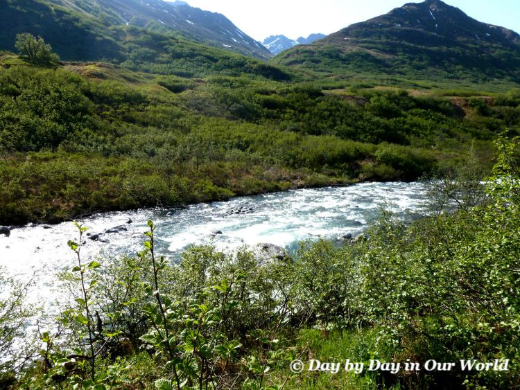 Small Rivers Run through the Area Gold Mint Trail Hatchers Pass Alaska