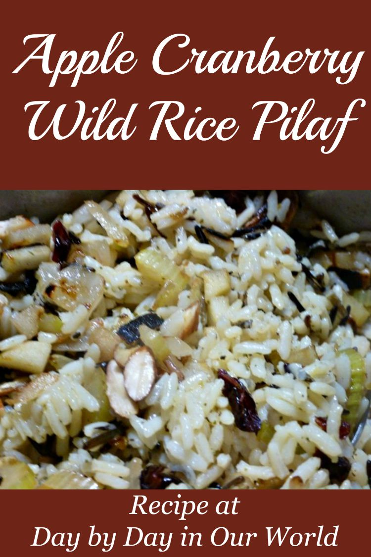 Apple Cranberry Wild Rice Pilaf is a Simple to Prepare Side Dish for any elegant meal