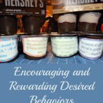 Chore Charts and Rewards to Encourage Desired Behaviors