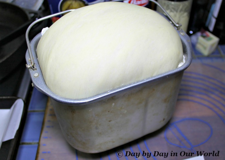 2 pound loaf of challah bread dough freshly pulled from the bread machine and ready to form into rolls