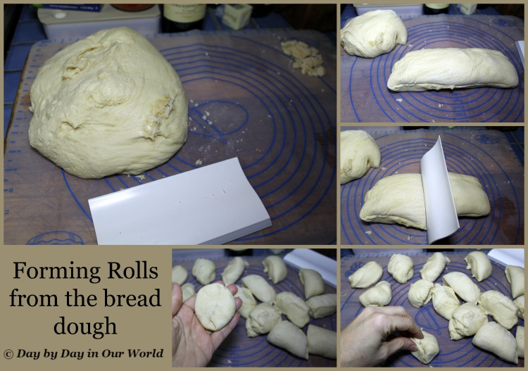 Forming Rolls from the bread dough A 2 pound loaf should yield 18 dinner rolls