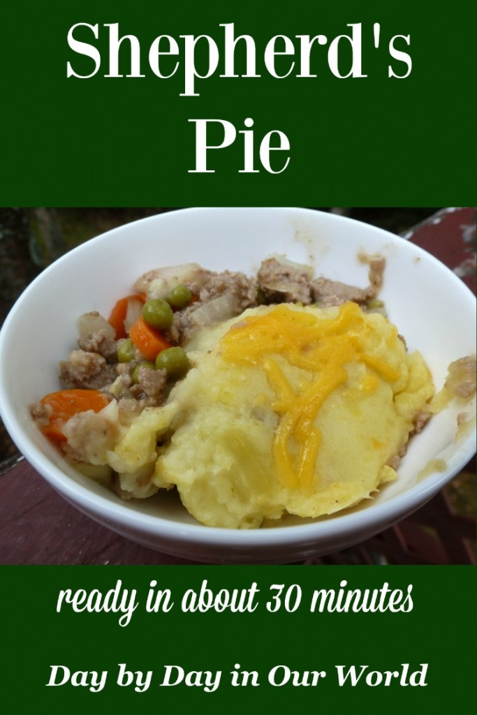 Feel like there is not enough time in your day to cook? Consider this Shepherd's Pie which is done in just over 30 minutes!
