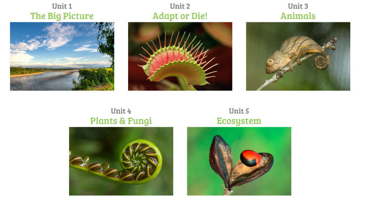 Rainforest Journey Presents Life Science Concepts through 5 Units of Study