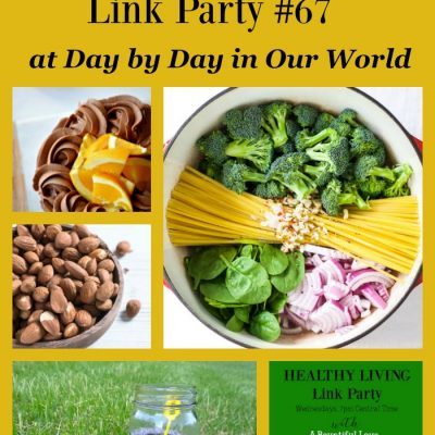 Healthy Living Link Party #67