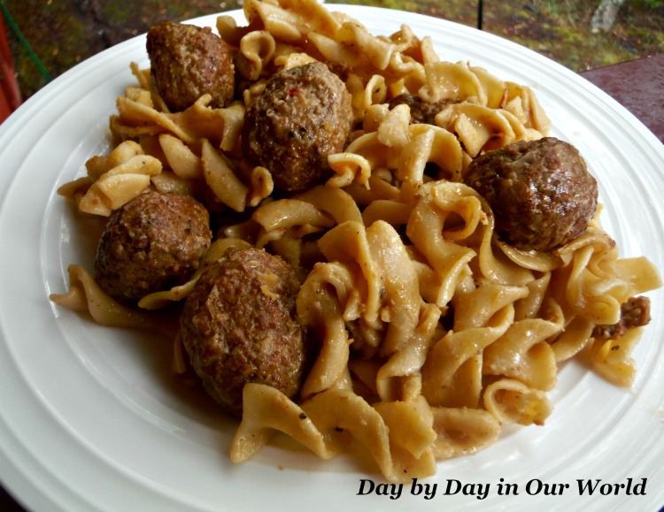 Egg Noodles with the Swedish Meatballs on top make for a great meal.