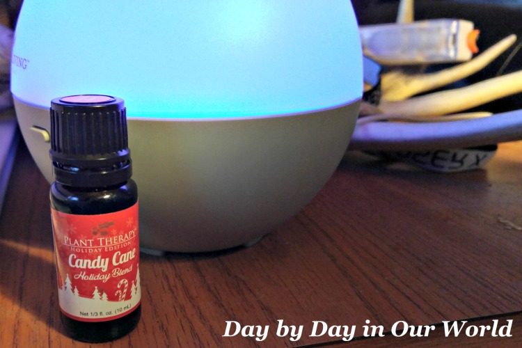 Diffusing a holiday or stress busting blend can help you relax.