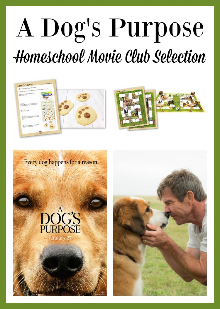 Go beyond the film! Use free curriculum from the Homeschool Movie Club to expand the experience with A Dog's Life.