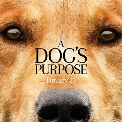 A Dog's Purpose: Family Friendly Movie