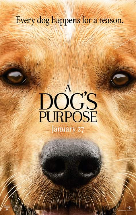 A Dog's Purpose is the Homeschool Movie Day selection for January 27 2017