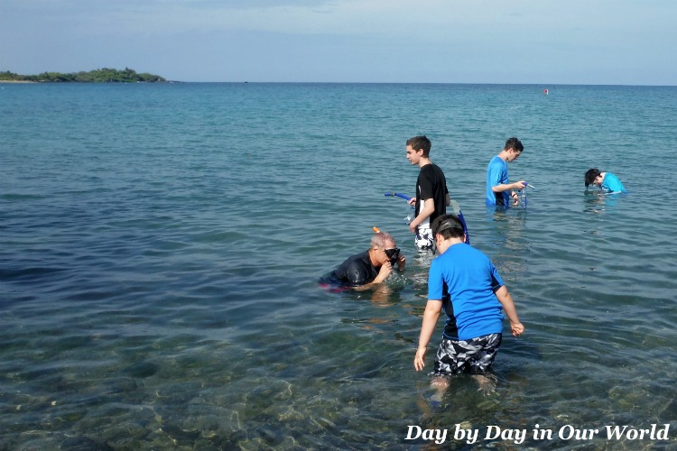 Snorkel and swim ABay Waikoloa Beach Resort
