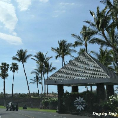 Things to Do at Waikoloa Beach Resort