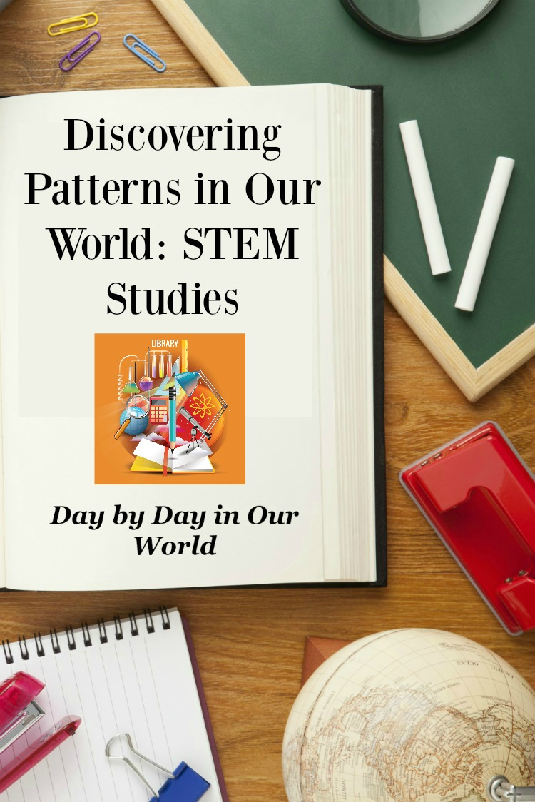 Spotlight On Patterns in our world STEM Studies PIN.