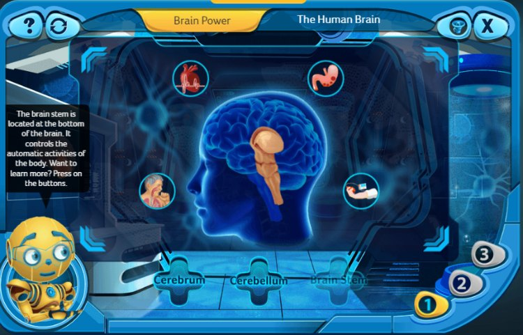 The Human Brain Level 1 Dacobots eLearning for Kids.