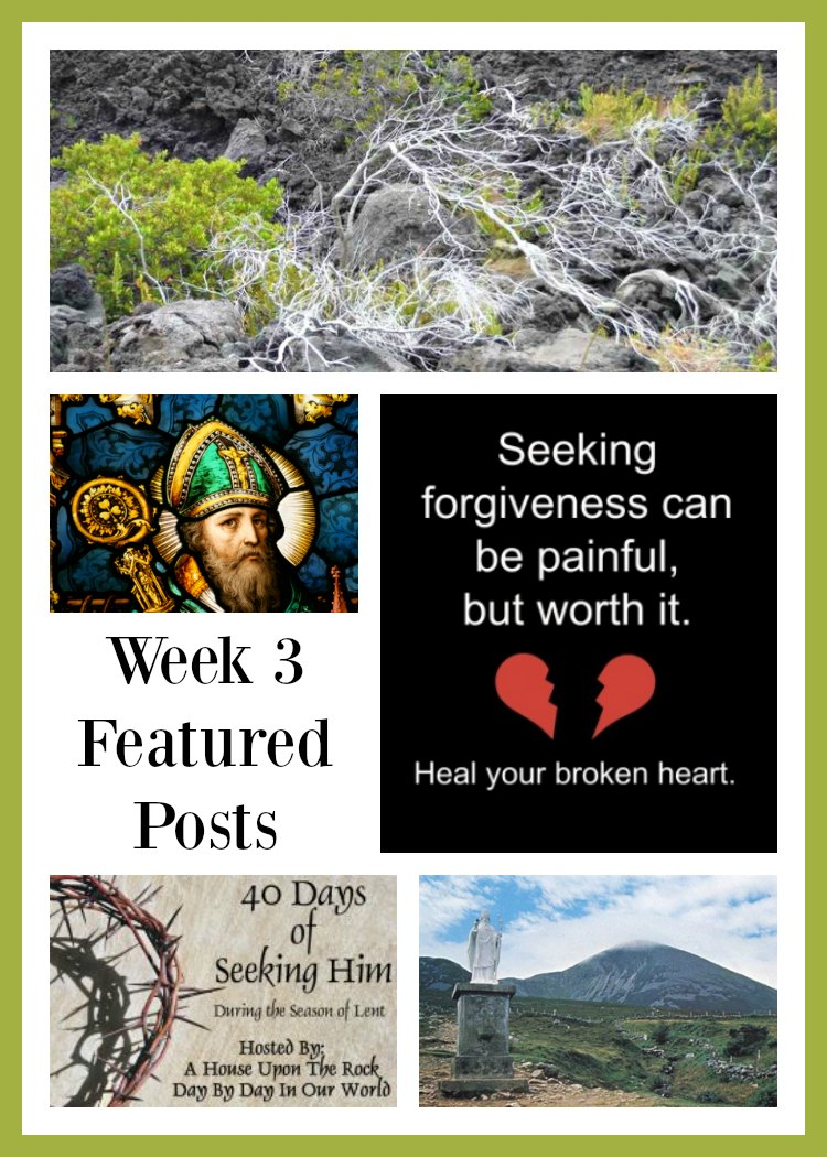 40 Days of Seeking Him Lent 2017 Week 3 with featured posts at Day by Day in Our World