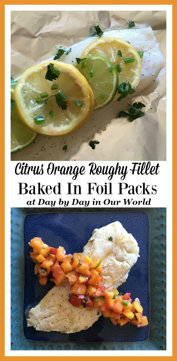 Citrus Orange Roughy Fillet Baked In Foil Packs