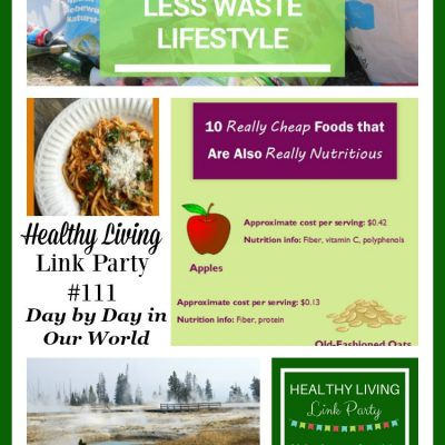 Healthy Living Link Party #111