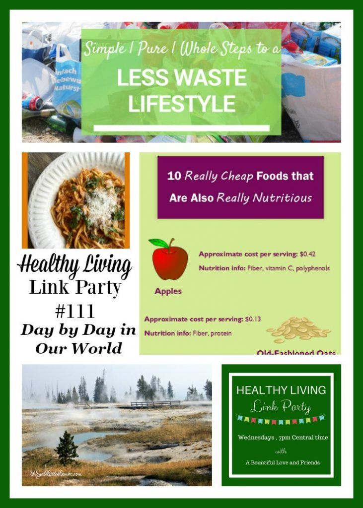 Healthy Living Link Party 111
