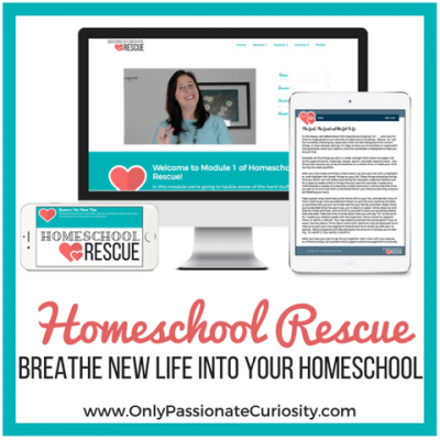 Get Refreshed and Focused with Homeschool Rescue