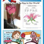 Super Teacher Worksheets for Elementary Students