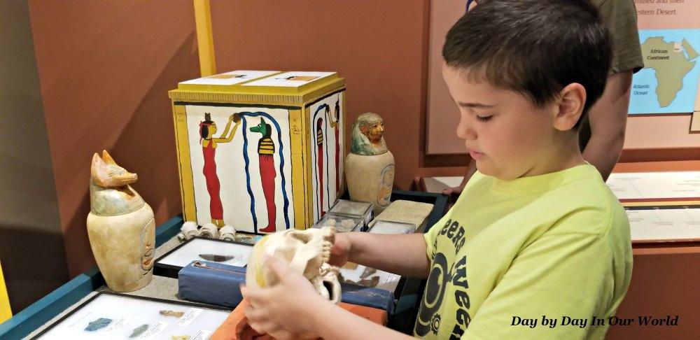 Hands On Egyptian Mummy Exhibit