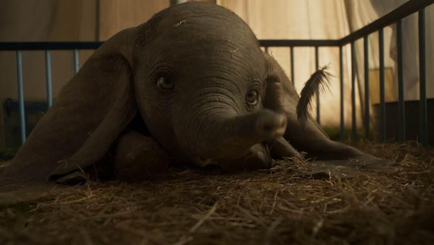 Live Action Dumbo 2019