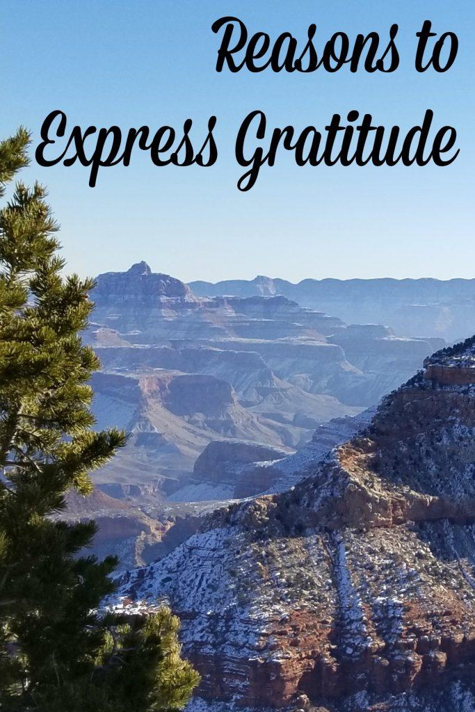 3 Reasons to Express Gratitude on a regular basis
